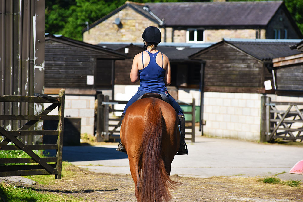 brookfield equestrian centre preston contact us image