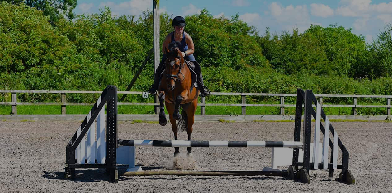 brookfield equestrian centre in preston