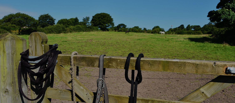 equestrian centre preston, lancashire